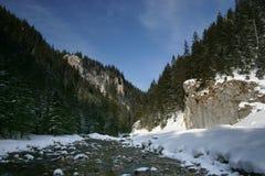долина tatra koscieliska Стоковые Изображения RF