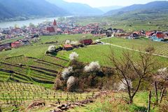 Долина Wachau весной Нижняя Австрия Стоковые Изображения RF