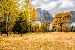 Долина Yosemite на пасмурном утре осени Стоковое Изображение RF
