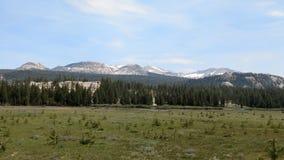 долина yosemite Стоковое фото RF