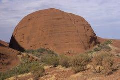 долинные ветеры Австралии Стоковое фото RF