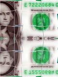 Долларовая банкнота валюты одного Соединенных Штатов Стоковая Фотография RF
