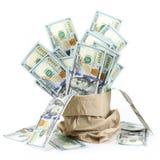 100 долларов в бумажной сумке стоковое фото rf
