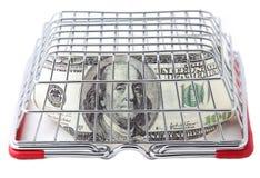 100 долларов покрыты с корзиной для товаров Стоковые Фотографии RF