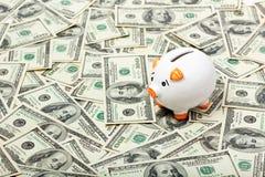 доллары банка piggy Стоковая Фотография