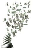 доллары летать Стоковая Фотография RF