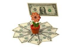 доллары мы стоковые фотографии rf