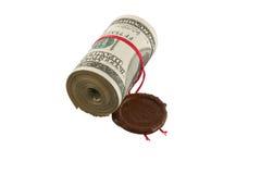 доллары свертывают загерметизировано стоковое фото