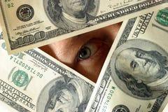 доллары Стоковые Изображения