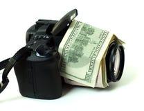 доллары digi Стоковое фото RF