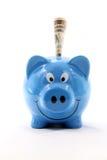 доллар кредитки банка piggy Стоковое фото RF