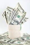 доллар кредиток много sack Стоковые Изображения