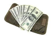 Доллар с бумажником Стоковые Изображения RF