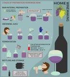 Домашнее виноделие Вино от виноградин Инфографика Стоковое Изображение RF