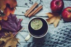 домашнее настроение осенью Стоковые Фото