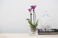 Домашнее оформление интерьера, винтажный стиль Стоковые Фотографии RF