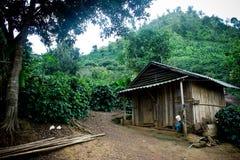домашнее сельское Стоковая Фотография RF