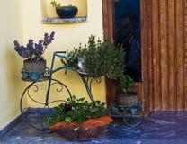 Домашние угловые двери Стоковое Изображение