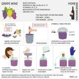 Домашний делать вина Вино от виноградин Инфографика Стоковая Фотография RF