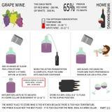 Домашний делать вина Вино от виноградин Инфографика Стоковые Фотографии RF