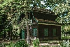 Домашний зеленый цвет сада деревьев снаружи Стоковое Фото