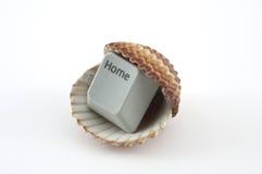 Домашний ключ внутри раковины моря Стоковое Изображение