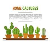 Домашний модель-макет кактусов бесплатная иллюстрация