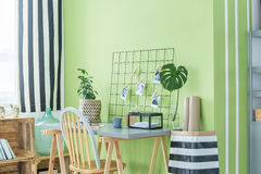 Домашний офис с зелеными растениями Стоковые Изображения