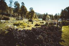 Домашний садовничать в Европе стоковое изображение