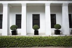 Домашний сад Стоковые Фотографии RF