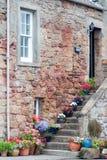 домашний scottish типичный Стоковое Изображение RF