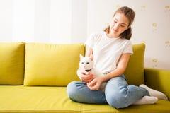 Домашняя атмосфера с котом стоковые фото