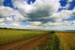 домашняя дорога Стоковая Фотография