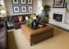 домашняя живущая роскошная комната Стоковые Фотографии RF