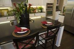 домашняя роскошь кухни самомоднейшая Стоковые Изображения