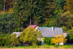 Дома в лесе Стоковые Фотографии RF