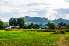 Дома в зеленых полях Стоковые Фотографии RF