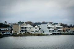 Дома вдоль берега падуба озера, в Virginia Beach, Virgini Стоковая Фотография RF