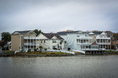 Дома вдоль берега падуба озера, в Virginia Beach, Virgini Стоковое Изображение
