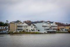 Дома вдоль берега падуба озера, в Virginia Beach, Virgini Стоковые Изображения