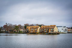 Дома вдоль берега падуба озера, в Virginia Beach, Virgini Стоковые Фото