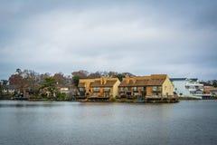 Дома вдоль берега падуба озера, в Virginia Beach, Virgini Стоковая Фотография