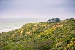 Дома в пляже мха стоковое изображение rf