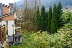 Дома в древесинах утра зимы на ноге горы Стоковые Изображения RF