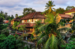 Дома в тропическом лесе в Ubud, Бали Стоковое Изображение