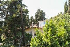 Дома в чащах деревьев Стоковое Фото