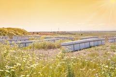 Дома для пчел в природе стоковая фотография