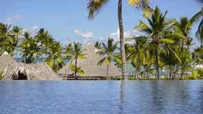 Дома на пляже среди пальм видеоматериал