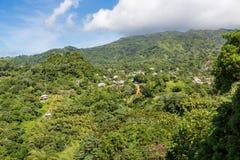 Дома на сочных холмах джунглей Стоковое Изображение RF