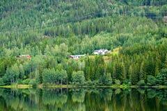 Дома на холме на береге озера леса, Норвегии Стоковые Изображения